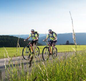 Rundtour um den Rohrhardsberg