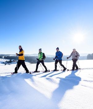 Winterwanderung über Zinswald und Katharinenhöhe