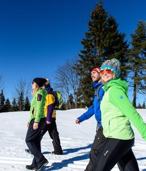 Winterwanderung über den Mühleberg