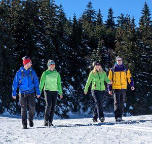 Winterwanderung über die Inselklause ins Schwarzenbachtal